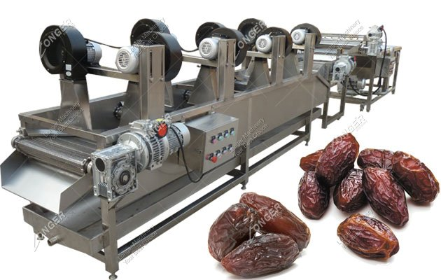 Industrial Palm Dates Washing And Drying Processing Machinery
